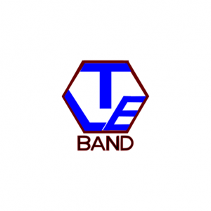 Domain Name: LTEBand.com and its custom vector logo