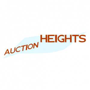 Domain Name: AuctionHeights.com and its custom vector logo